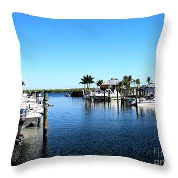 Florida Throw Pillow by Oksana Semenchenko