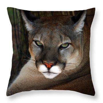Florida Panther Throw Pillow