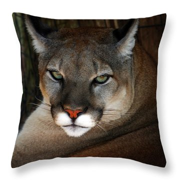 Florida Panther Throw Pillow