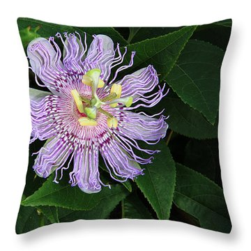 Florida Passion Flower Throw Pillow