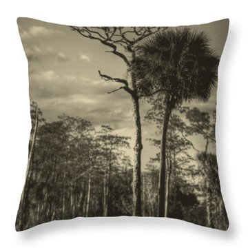 Florida Postcard Throw Pillow by Debra and Dave Vanderlaan