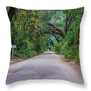 Florida Road Throw Pillow