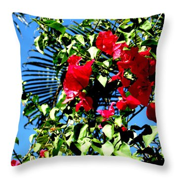 Throw Pillow featuring the photograph Florida Sky View by Oksana Semenchenko