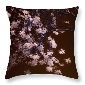 Florida Spring Throw Pillow