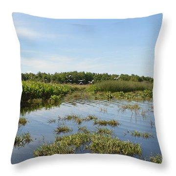 Florida Swamp Throw Pillow by Renie Rutten