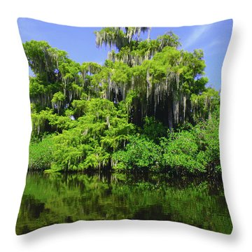 Florida Swamps Throw Pillow by Carey Chen