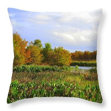 Florida Wetlands August Throw Pillow