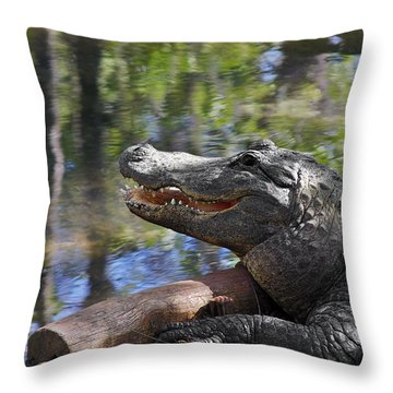 Florida - Where The Alligator Smiles Throw Pillow by Christine Till