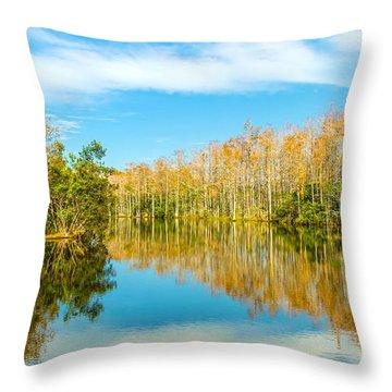 Florida Winter Wonderland Throw Pillow