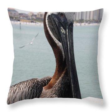 Throw Pillow featuring the photograph Florida's Finest Bird by David Nicholls