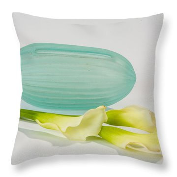 Flowers In Vases 4 Throw Pillow