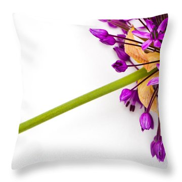 Flower At Rest Throw Pillow