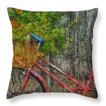 Flower Basket On A Bike Throw Pillow by Mark Kiver