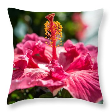 Flower Closeup Throw Pillow