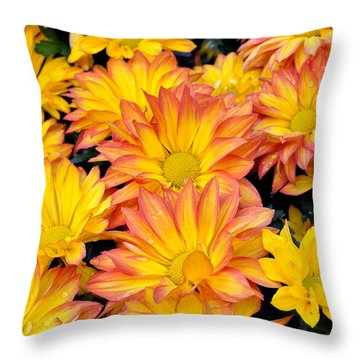 Flower  Throw Pillow by Gandz Photography