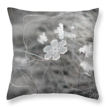 Flower In The Snow Throw Pillow