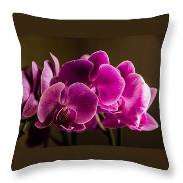 Flower In The Window Light Throw Pillow by Bruce Pritchett