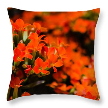Flower Macro 1 Throw Pillow