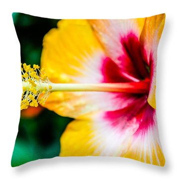 Flower Macro 2 Throw Pillow