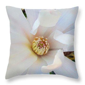 Flower Magnolia White Throw Pillow by Joyce Woodhouse
