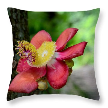 Flower Of Cannonball Tree Singapore Throw Pillow