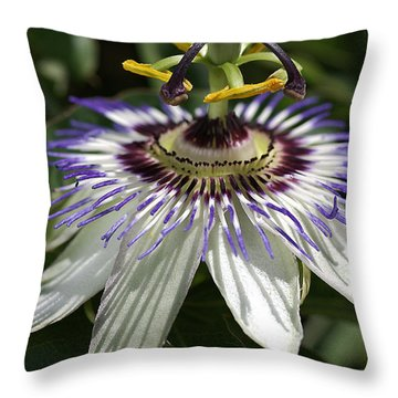 flower-Passionfruit Throw Pillow
