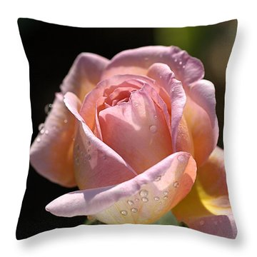 Flower-pink And Yellow Rose-bud Throw Pillow