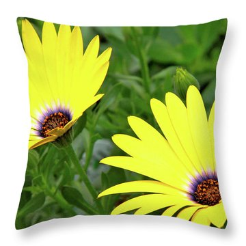 Flower Power Throw Pillow by Ed  Riche