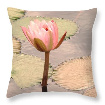 Flower Power In The Pond Throw Pillow