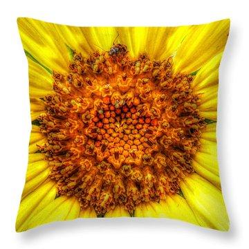 Flower Power Throw Pillow by Tina  LeCour