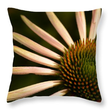 Flower Rays Throw Pillow