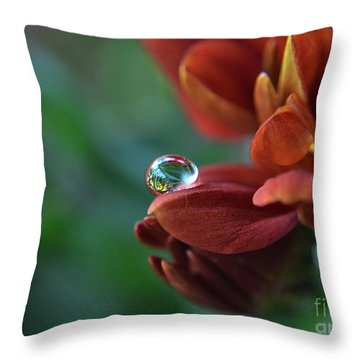 Throw Pillow featuring the photograph Flower Reflection by Michelle Meenawong