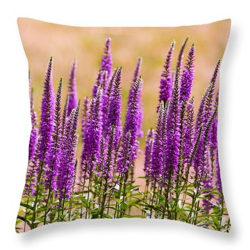 Flower - Speedwell Figwort Family - I Dream Of Lavender  Throw Pillow by Mike Savad