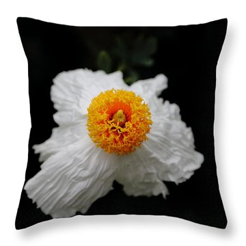Flower Sunny Side Up Throw Pillow