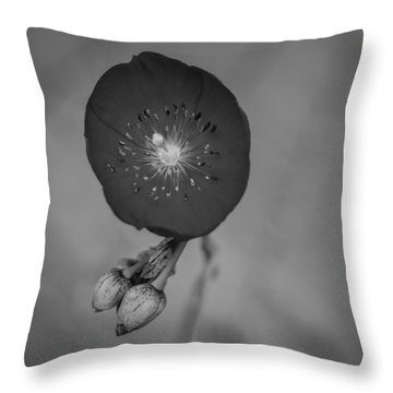 Throw Pillow featuring the photograph Flower Unknown by Ron White