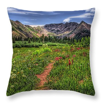 Throw Pillow featuring the photograph Flower Walk by Priscilla Burgers