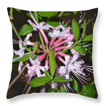 Throw Pillow featuring the photograph Flower Wheel by Tara Potts
