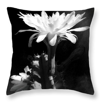 Throw Pillow featuring the photograph Flowering Cactus 3 Bw by Mariusz Kula