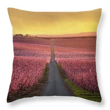 Peach Flower Throw Pillows