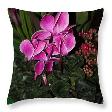 Flowering Plant Throw Pillow by Cyril Maza