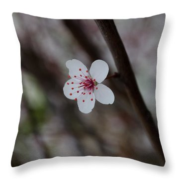 Flowering Plum 3 Throw Pillow