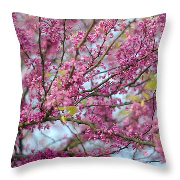 Throw Pillow featuring the photograph Flowering Redbud Tree by Suzanne Powers