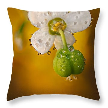 Flowering Spurge  Throw Pillow