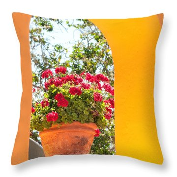 Throw Pillow featuring the photograph Flowerpot In A Mexican Wall by David Perry Lawrence