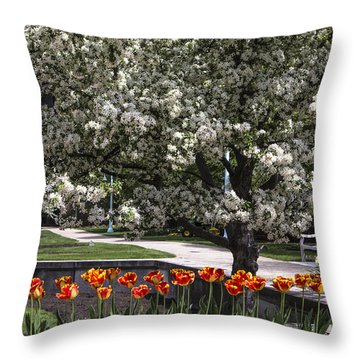 Flowers And Bench At Michigan State University  Throw Pillow by John McGraw
