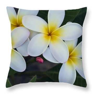 Flowers And Their Bud Throw Pillow