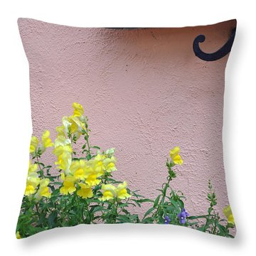Flowers And Window Frame Throw Pillow by Bruce Gourley