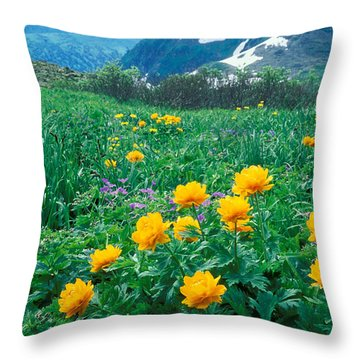 Flowers Throw Pillow by Anonymous