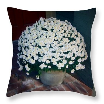 Flowers At The Door Throw Pillow by Brian Wallace