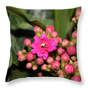 Flowers Throw Pillow by Cyril Maza
